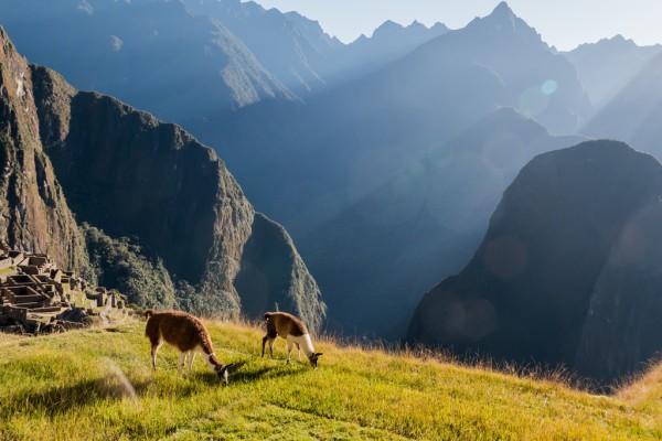 Machu Pichu, ruinas peruanas