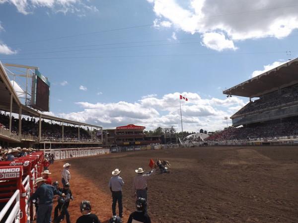 Los rodeos son uno de los eventos importanes de la Calgary Stampede
