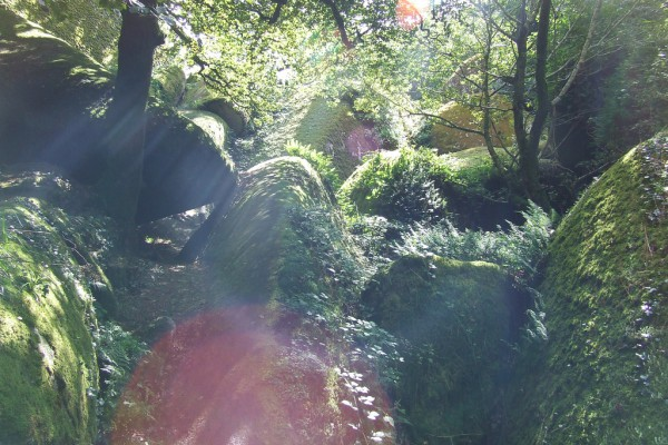 La magia parece inundar el bosque de Huelgoat