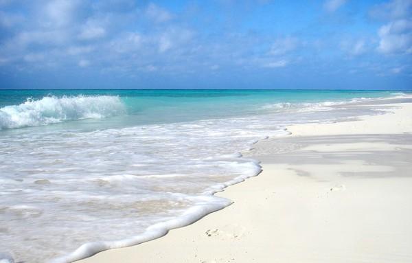MSC Cruceros fomentará a Cuba como destino de luna de miel