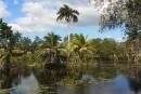 Villas turísticas para disfrutar en pareja en Cuba