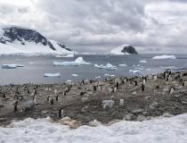 Vuelos turísticos a la Antártida a partir de 2018