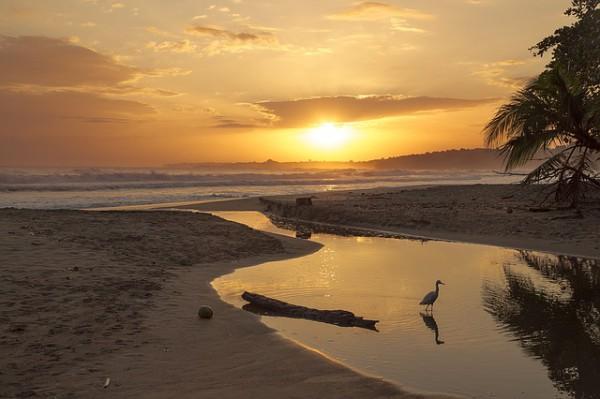 Datos positivos de ingresos turísticos en Costa Rica