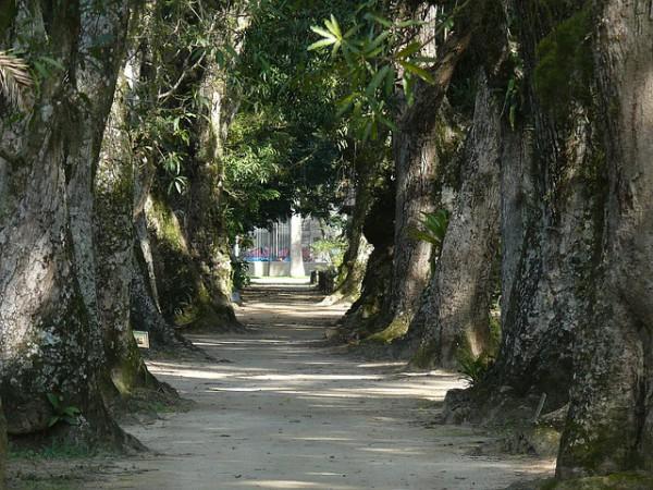 Brasil pierde destinos con potencial turístico