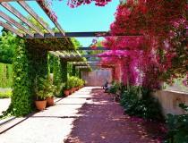 El Jardín de las Hespérides, en Valencia
