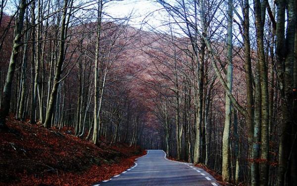 El 60% de turistas españoles viajará en coche