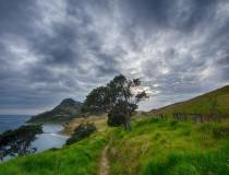 Evolución positiva del turismo en Nueva Zelanda
