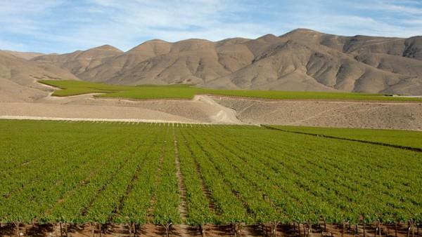 Chile busca mejorar competitividad de empresas turísticas