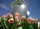 La Torre A'DAM de Amsterdam y su curioso mirador
