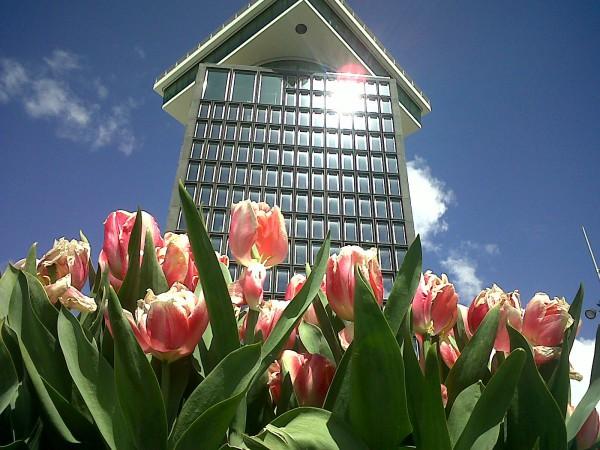 La Torre ADAM pretende convertirse en la nueva atracción turística de Amsterdam