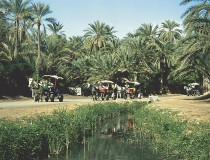 La ciudad de Tozeur, la capital del desierto en Tunez