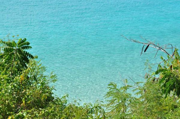 Puerto Rico se promocionará como destino ecológico
