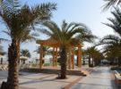 Las 6 visitas para disfrutar en Ras Al Khaimah