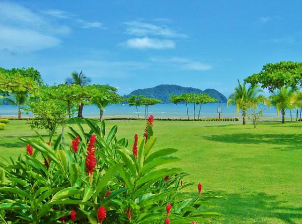 Air France ofrecerá vuelos directos a Costa Rica