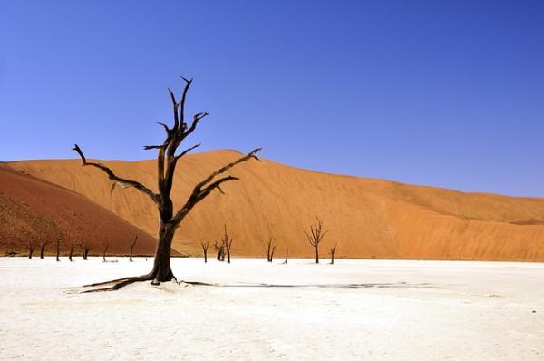 KLM ofrecerá nuevas rutas para conocer Namibia