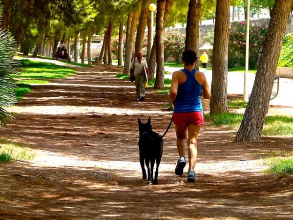 Paseando por el antiguo cauce del río Turia, el eje verde de Valencia