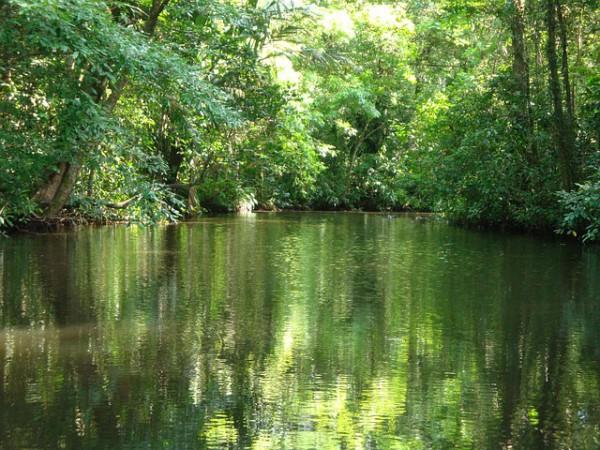 Costa Rica quiere potenciar su Turismo de Bienestar