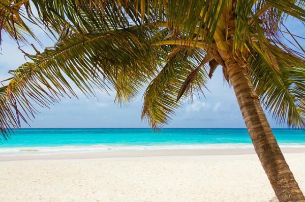 Celebrity Cruises ofrecerá cruceros por el Caribe todo el año