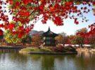 Seúl fomenta el turismo con la Seoul Pass