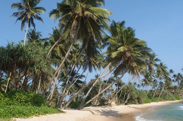 Sri Lanka anuncia su plan para fomentar el turismo
