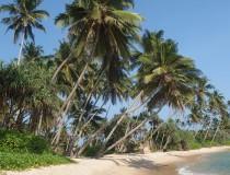 Futuro positivo para el sector turístico de Sri Lanka