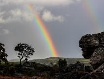 África buscará fomentar el turismo sostenible
