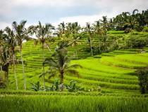 Bali buscará ser destino destacado para el turismo de aventura