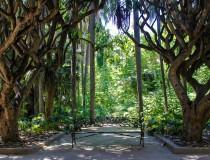 Conoce el Jardín de Pruebas de Hamma