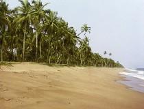TAP ofrecerá vuelos a Costa de Marfil