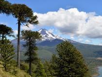 Chile ampliará sus parques nacionales
