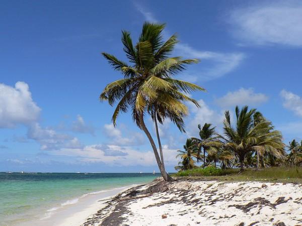 República Dominicana tendrá más conexiones con Alemania