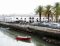La nueva edición del Algarve Nature Week