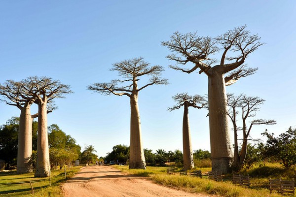 Lugares increíbles para conocer en África