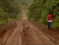 Descubre la selva misionera en Argentina