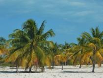 Cuba recibe más turistas de Brasil