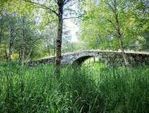 Galicia quiere potenciar el sector turístico