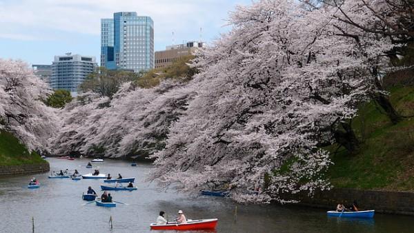 Japón recibe cada vez más turistas españoles