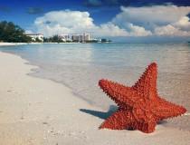 Festivales para disfrutar en las Bahamas
