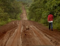 Descubre la selva misionera en Argentina (Parte II)