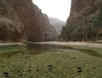 Six Senses ofrecerá un crucero de lujo por Omán