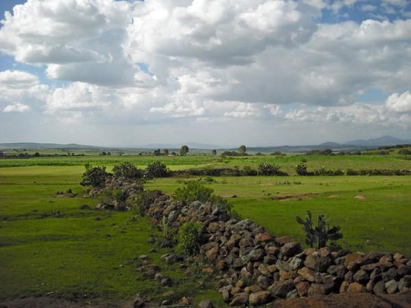 Querétaro tendrá nuevas rutas directas de Volaris