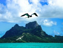 Alternativas para disfrutar en Bora Bora, Polinesia Francesa