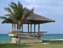 Jamaica consigue unos datos positivos durante el invierno