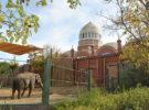 Conoce el Jardín Botánico y Zoo de Cincinnati