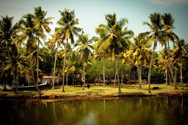 Kerala se compromete con el turismo verde
