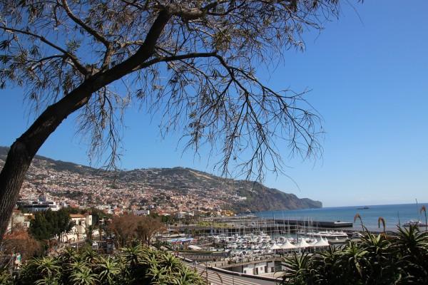 Crece a buen ritmo del turismo de cruceros en Madeira