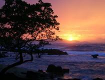 Puerto Rico potenciará el turismo gastronómico