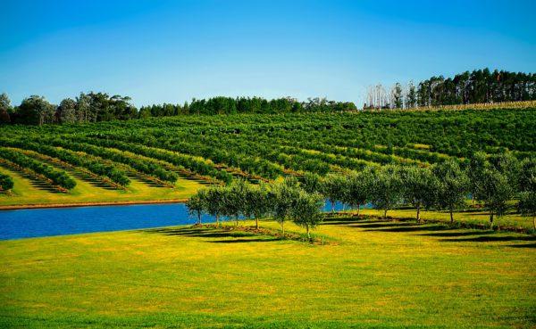 Uruguay consigue datos positivos en materia de turismo