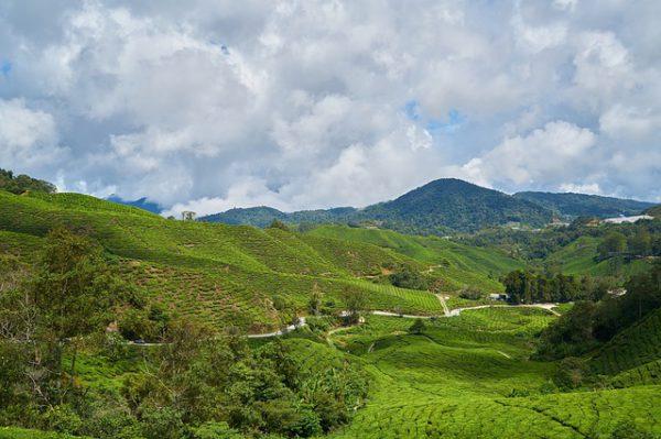 Malasia aprueba la tasa turística