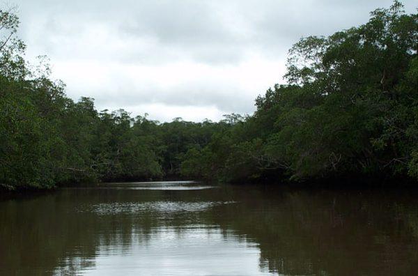 Un  sitio para conocer en Costa Rica que vale la pena